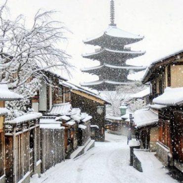 Классическая Япония (зима 2019-2020)