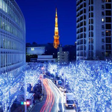 НОВОГОДНИЕ КАНИКУЛЫ (январь 2020)  Токио – Одайба- Хаконе