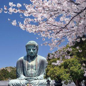 buddha-kamakura
