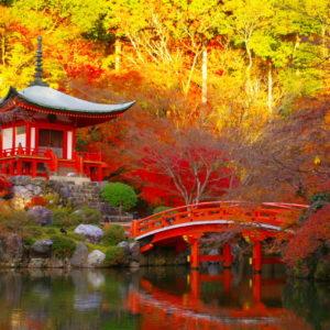 Осень-в-Японии-1