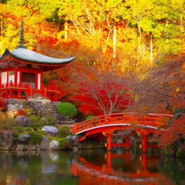Кленовые листья и горячие источники Японии  (осень 2019)