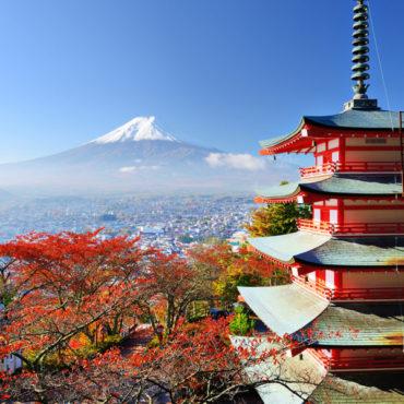 Япония: Кайкэ и Киото (осень-зима 2019-2020)