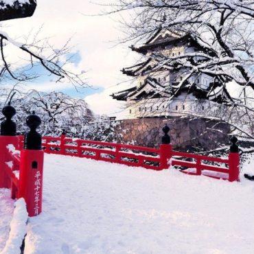 Токио: вчера и сегодня (зима 2019-2020) Динамическое бронирование