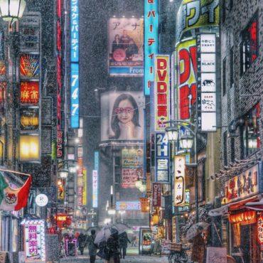 Классическая Япония версия лайт (зима 2019-2020)